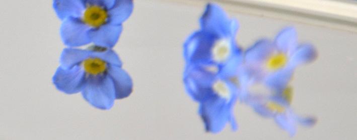 einhochzeitsblog DIY Tischkarten Namenskarten Blumen 3