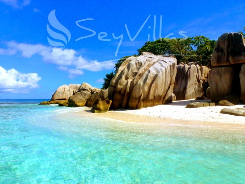 Coco Island_big