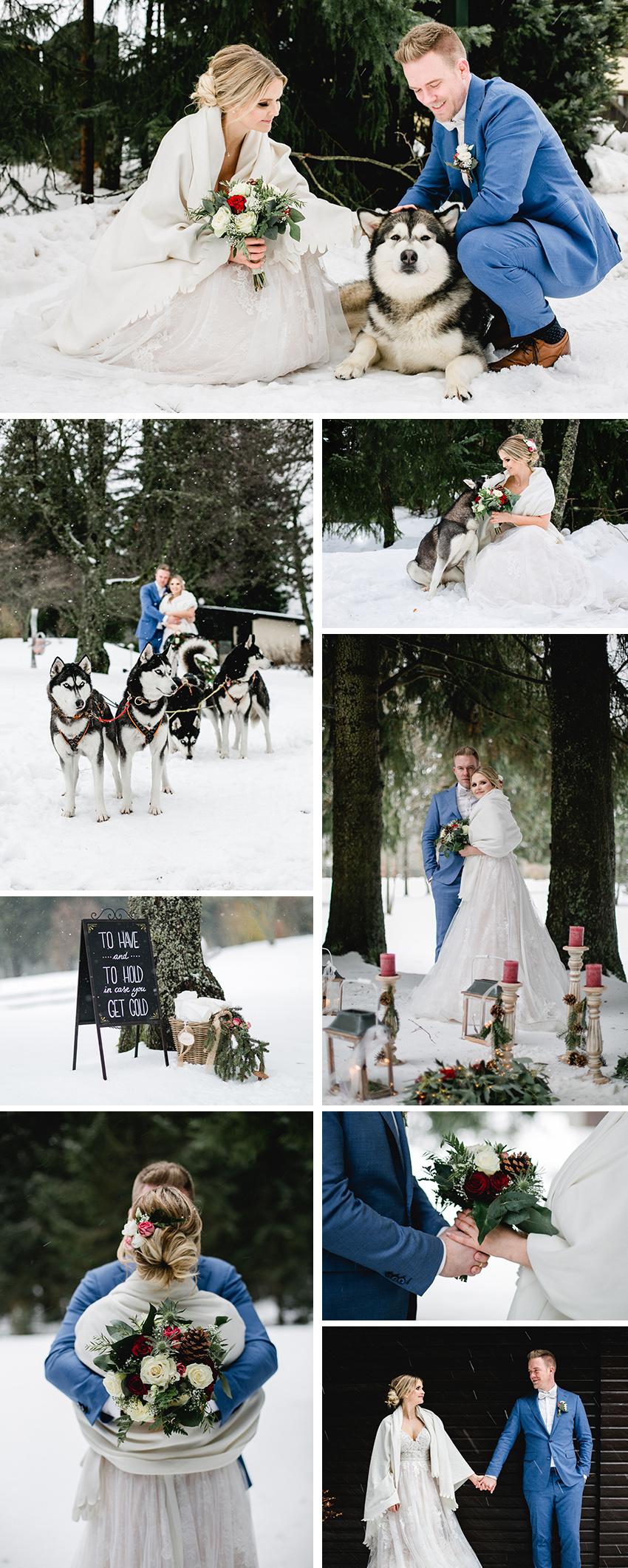 Hochzeit im Schwarzwald mit Huskys